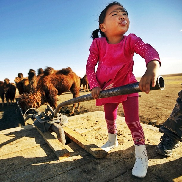John Poole, Pumping water for the family camels in Mongolia_flickr_7248837384 with CClicense Mining in the Gobi exhausts local water resources