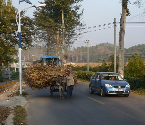 Ein Kleinwagen von VW überholt ein Pferdegespann