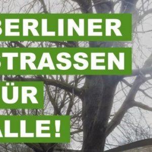 Berliner Straßen für Alle – Positionspapier