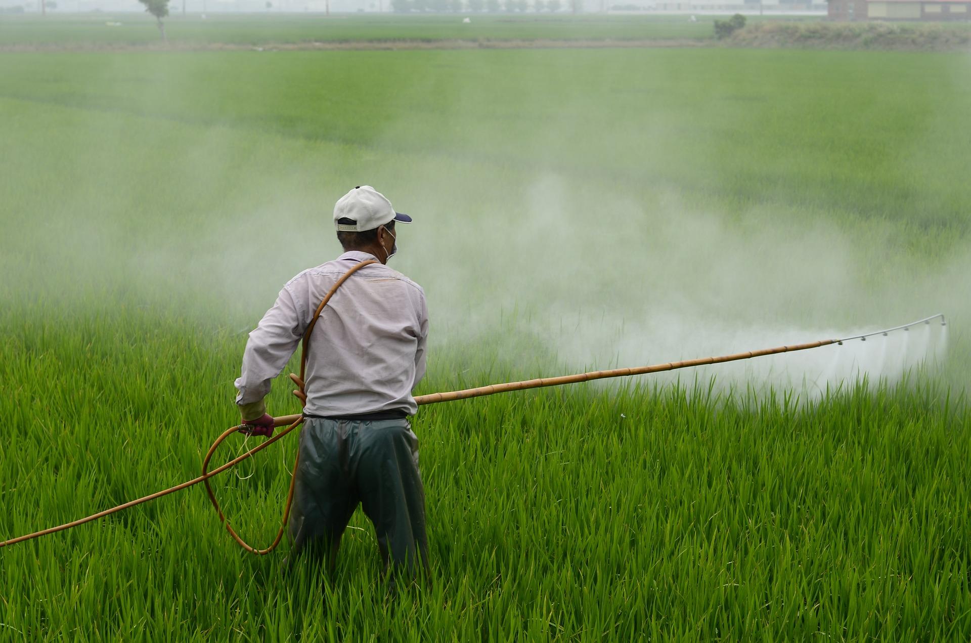 Mann sprüht Pestizide
