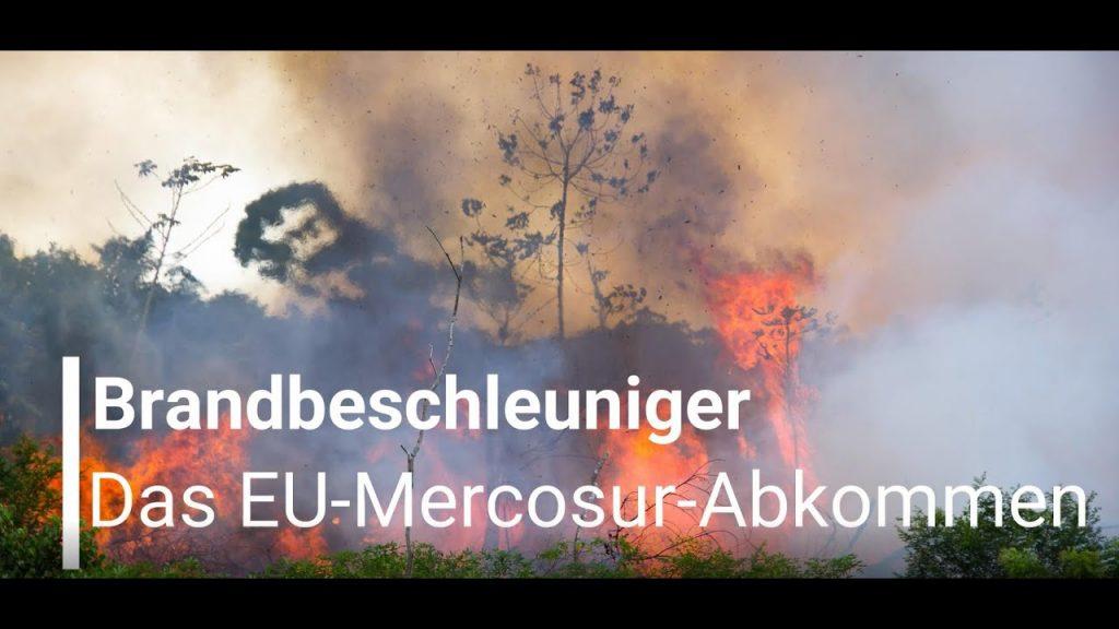 Brandbeschleuniger – Das EU-Mercosur-Handelsabkommen