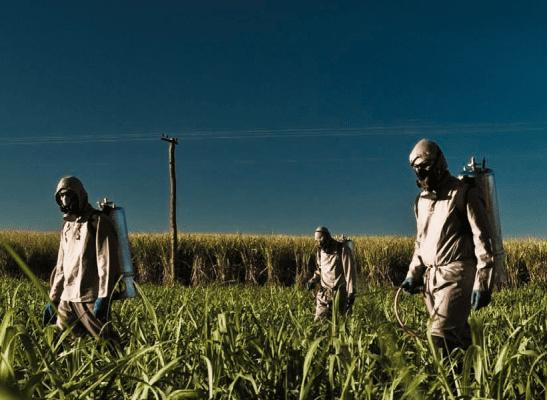 EU-Mercosur – Ein giftiges Abkommen